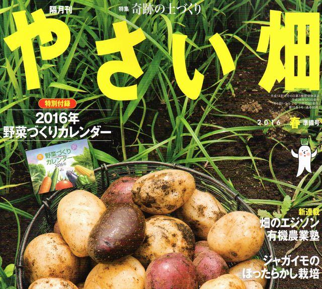やさい畑2016春表紙