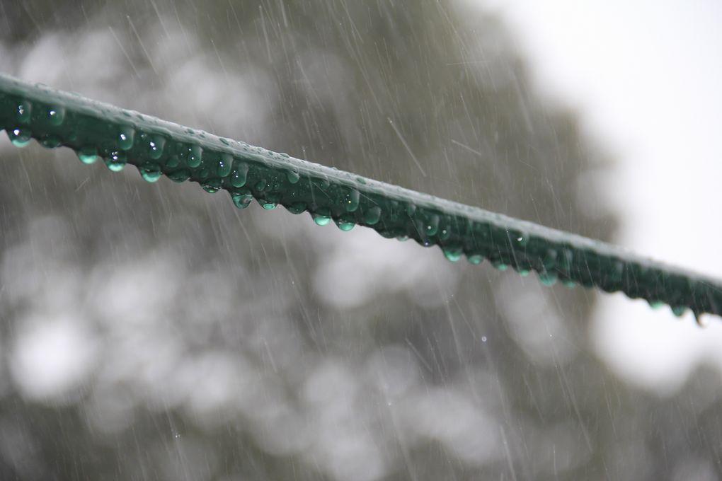 久しぶりの強い雨