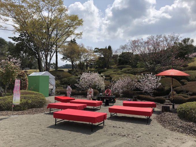 錦山CCさくら祭り