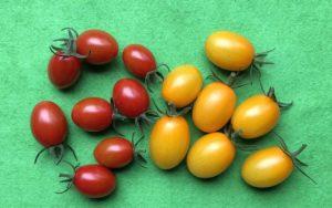 20180623ミニトマト